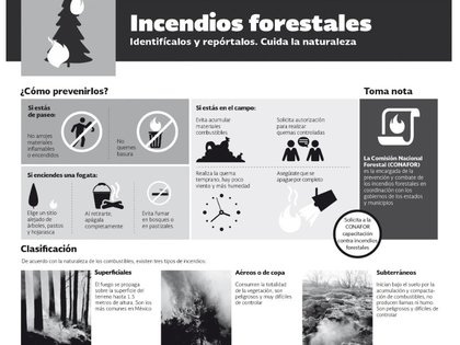 La mejor medida para combatir los incendios forestales es la prevención (Foto: CONAFOR)
