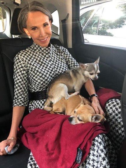 Florinda se aficionó al cuidado de perritos Chihuahua, como Flor, quien falleció recién (Foto: Instagram @florindamezach1)