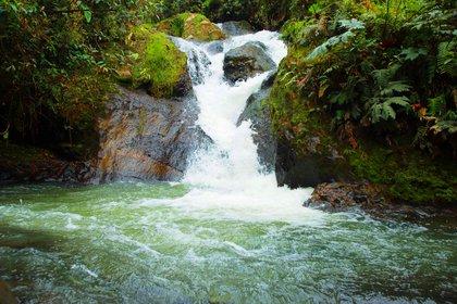 En la reserva se puede acceder a dos senderos ecológicos en los que se practica senderismo y visitar la Cascada de los Toboganes. Foto: Cortesía de San Vicente Reserva Termal.