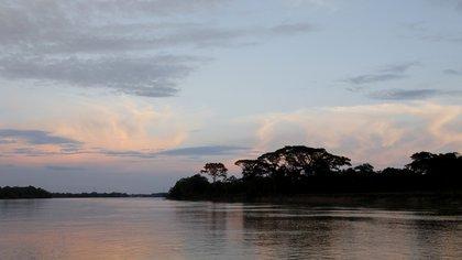 Los once proyectos para la protección y restauración ecológica en Colombia