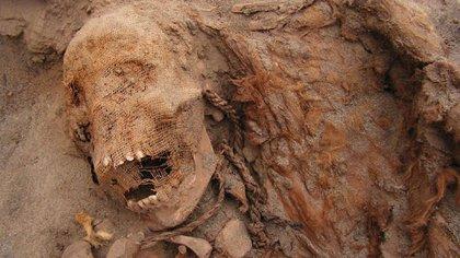 Momia descubierta en La Libertad, Peru, en 2018
