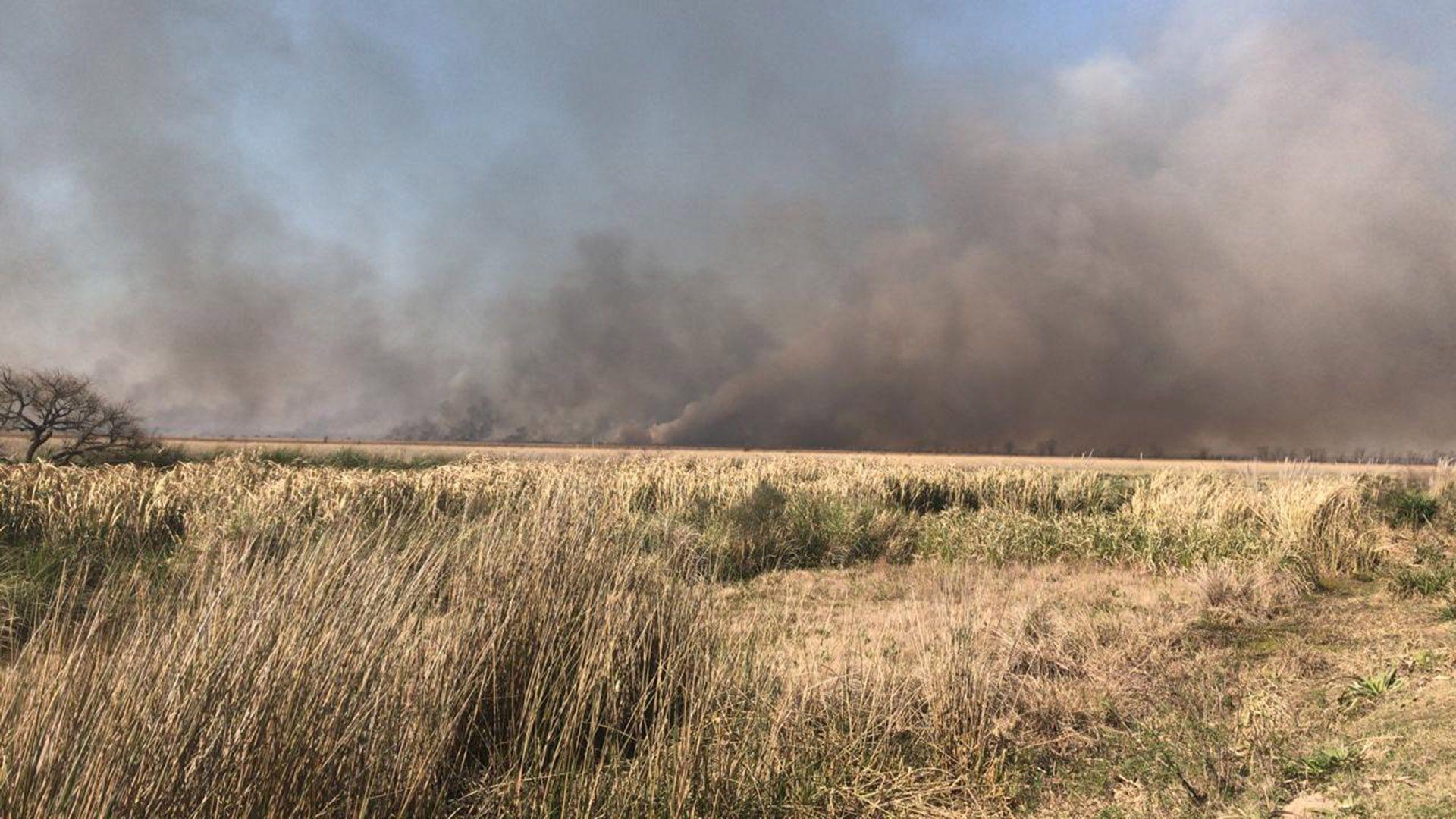 incendio de pastizales en el Delta