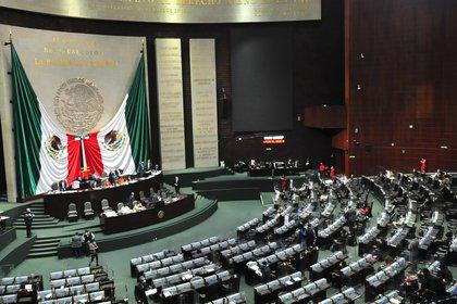 Morena planea llevar al Pleno el dictamen de desaparición de 109 fideicomisos tan pronto como este jueves (Foto: Cortesía de la Cámara de Diputados)