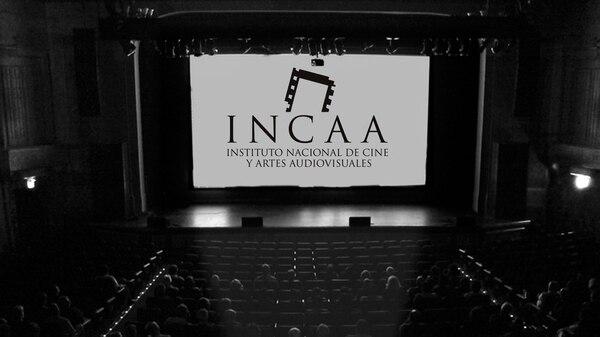 En la última década se estrenaron 1622 películas argentinas, de las cuales solo 222 contaron con mujeres en la dirección