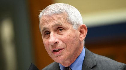 El prestigioso epidemiólogo Anthony Fauci, principal asesor del gobierno estadounidense en esta pandemia - Kevin Dietsch/UPI/Bloomberg