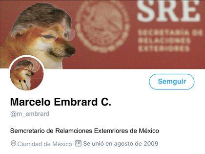 Inclusive un cibernauta se tomó la molestia de re hacer el perfil del canciller como si fuera Cheems (Foto: Twitter/@hebertosinlao)