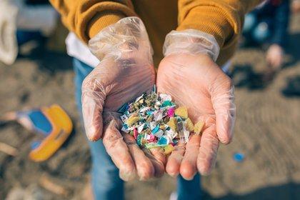 Los microplásticos son pequeños trozos de plástico menores a 5 milímetros. Han sido durante mucho tiempo una preocupación en la investigación de desechos marinos (Shutterstock)