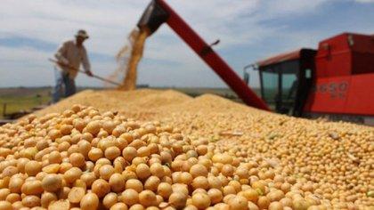 Producción agrícola en Argentina