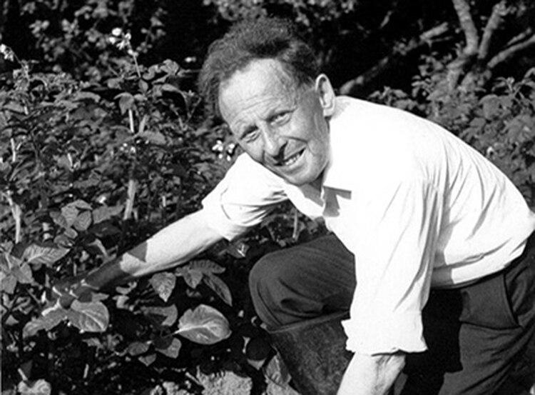 En su huerta, Donald Watson cultivaba sus verduras y hortalizas, y con sumo cuidado escarbaba la tierra para no dañar lombrices. También fue abstemio y un reconocido guía para excursionistas en el Distrito de los Lagos. (The Vegan Society)
