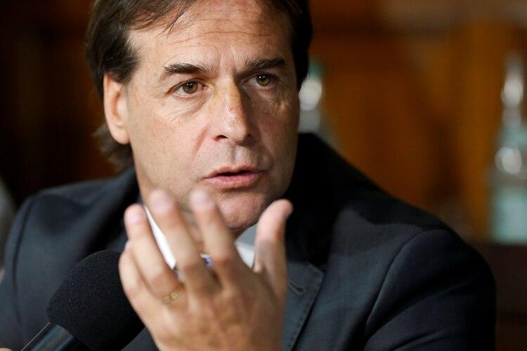 El presidente electo quiere recibir a 100.000 argentinos en 5 años (REUTERS/Mariana Greif)