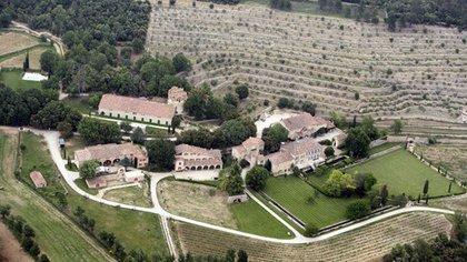 Se dice que el árbol habría sido plantado en los terrenos de la propiedad de los actores en Francia (The Grosby Group)