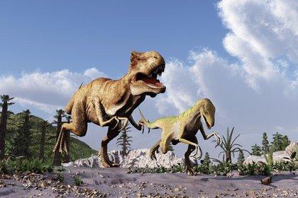 El dinosaurio Vectaerovenator inopinatus, uno de los últimos hallazgos