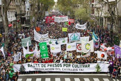 Miles de personas en la última marcha por la despenalización en Buenos Aires (Revista THC)