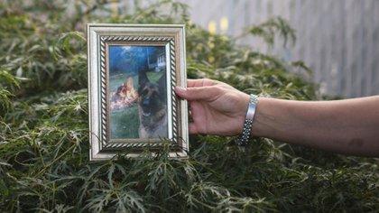 Fallece el primer perro diagnosticado con Covid-19 en EU