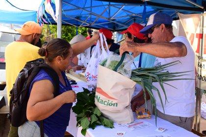 Beneficiarios de la tarjeta Alimentar realizaron compras en una feria de Concordia