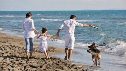 La llegada de una mascota puede traer felicidad y poner a prueba o incorporar distintos valores (iStock)