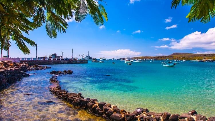 Las Islas Galápagos tienen mucha valoración internacional que ayuda a su conservación, siendo considerado Patrimonio Natural de la Humanidad