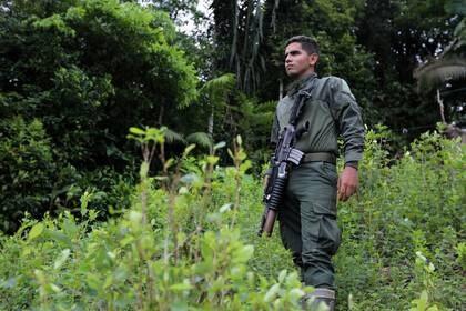 Un policía antinarcóticos hace guardia durante una operación de erradicación en una plantación de hojas de coca en Tumaco, Colombia (REUTERS/Luisa Gonzalez)