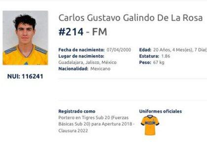 (Captura de pantalla: Liga MX)