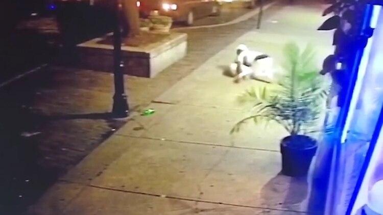 Los dossufren desde el día del ataque un shock postraumático (Foto: captura de pantalla de video)