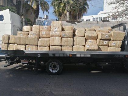 Marihuana en Sinaloa (Foto: Twitter/@GN_MEXICO_)