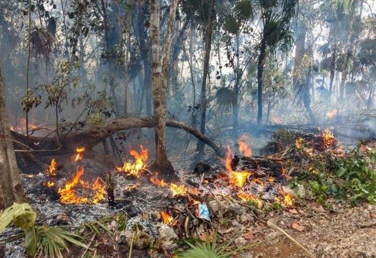 El primer incendio ha sido controlado casi en su totalidad (Foto: @IsraelHerreraa)