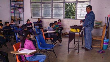 Tamaulipas, Coahuila, Veracruz, Nayarit y Chiapas vacunarán a los maestros contra COVID-19