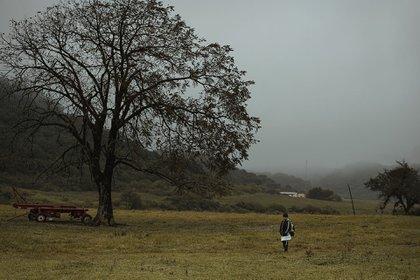 Una fotografía del proyecto tomada en Tucumán