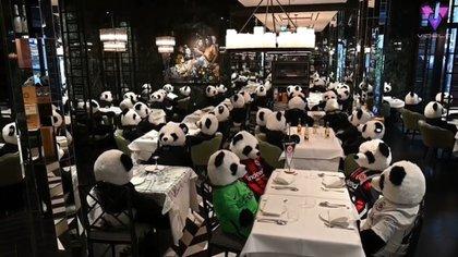 04/12/2020 Osos panda de peluche reemplazan a los clientes de un restaurante de Frankfurt afectado por la pandemia. MADRID, 3 dic. (EDIZIONES) En lugar de clientes, una multitud de osos panda de peluche ocupan las mesas del restaurante Pino de comida italiana situado en el centro de Frankfurt, Alemania. SOCIEDAD YOUTUBE/VIDELO