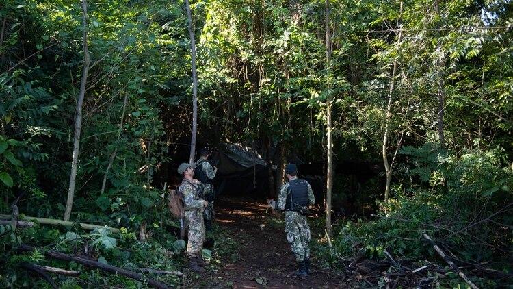 Welcome to the jungle: la entrada al campamento cosechero a un costado de la plantación (Adrian Escandar)