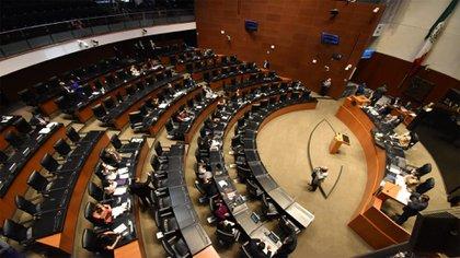 Ahora, el Senado analizará el dictamen enviado por la Cámara de Diputados (Foto: Senado Mexico)