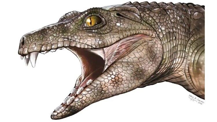 Ilustración de una representación del antepasado del cocodrilo actual: Dibujo de Jorge A. González