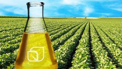 El incremento del 5 de enero se debió, según explicó YPF , a la suba en los costos del biodiésel y del bioetanol.