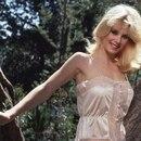 Mandatory Credit: Photo by Shutterstock (77453t) Dorothy Stratten Murder victim Dorothy Stratten -1980
