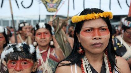 Nemonte Nenquimo (AmazonFrontlines.org)