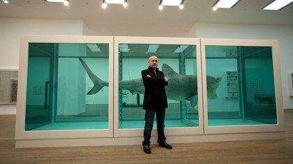 El tiburón se conserva en formaldehído