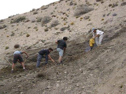 Excavaciones en la Cuenca Cañadón Asfalto de Chubut, en la Patagonia Argentina