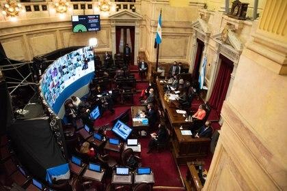 La mayoría de los senadores siguen la sesión en forma remota (Foto: Franco Fafasuli)