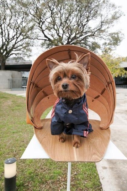 """""""Las Marinas"""", otra de las casas de perros expuestas por DArA en Recoleta realizada en diferentes maderas"""