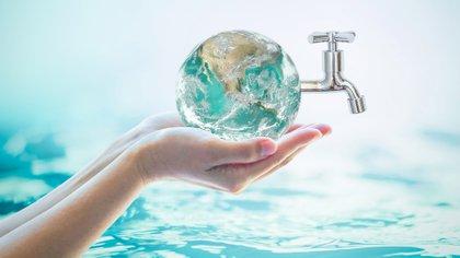 El el 5 de junio es el Día Mundial del Medio Ambiente (Shutterstock)