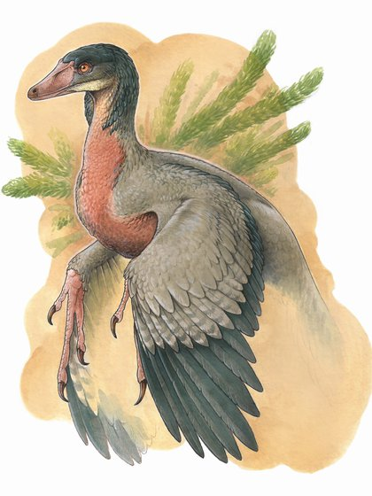 Reconstrucción artística del Overoraptor chimentoi (Gabriel Lio)