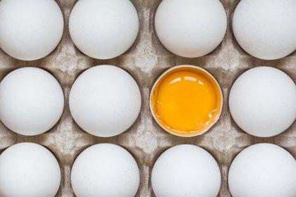 Es recomendable un huevo por día, es un mito que aporta colesterol malo (Shutterstock)