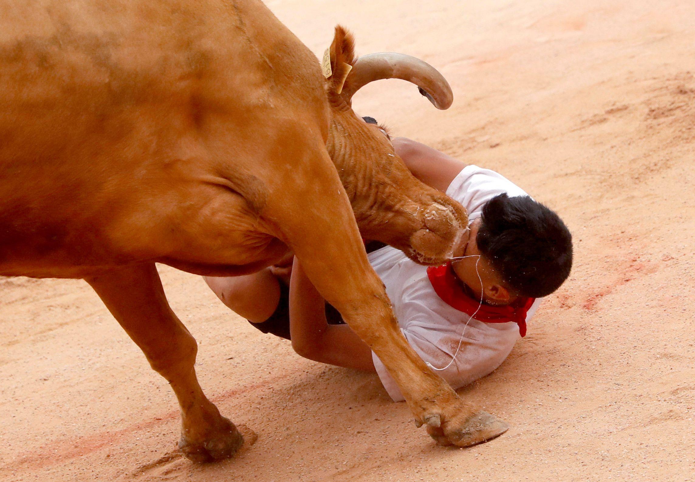 Como cada año, miles de personas, procedentes de todo el mundo, desafiaron al miedo y corrieron delante de toros bravos en los encierros, siguiendo una antigua tradición