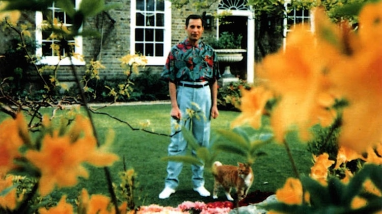 La historia detrás de las dos últimas fotografías de Freddie Mercury(Jim Hutton)