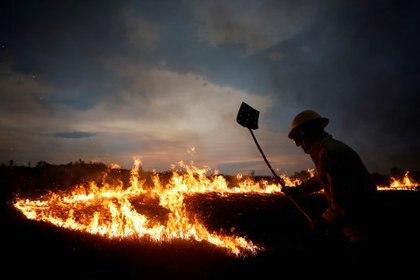 Un brigadista de incendios del Instituto Brasileño de Medio Ambiente y de los Recursos Naturales Renovables (IBAMA) intenta controlar los puntos críticos durante un incendio en las tierras indígenas Tenharim/Marmelos, estado de Amazonas, Brasil. 15 de septiembre de 2019. REUTERS/Bruno Kelly.