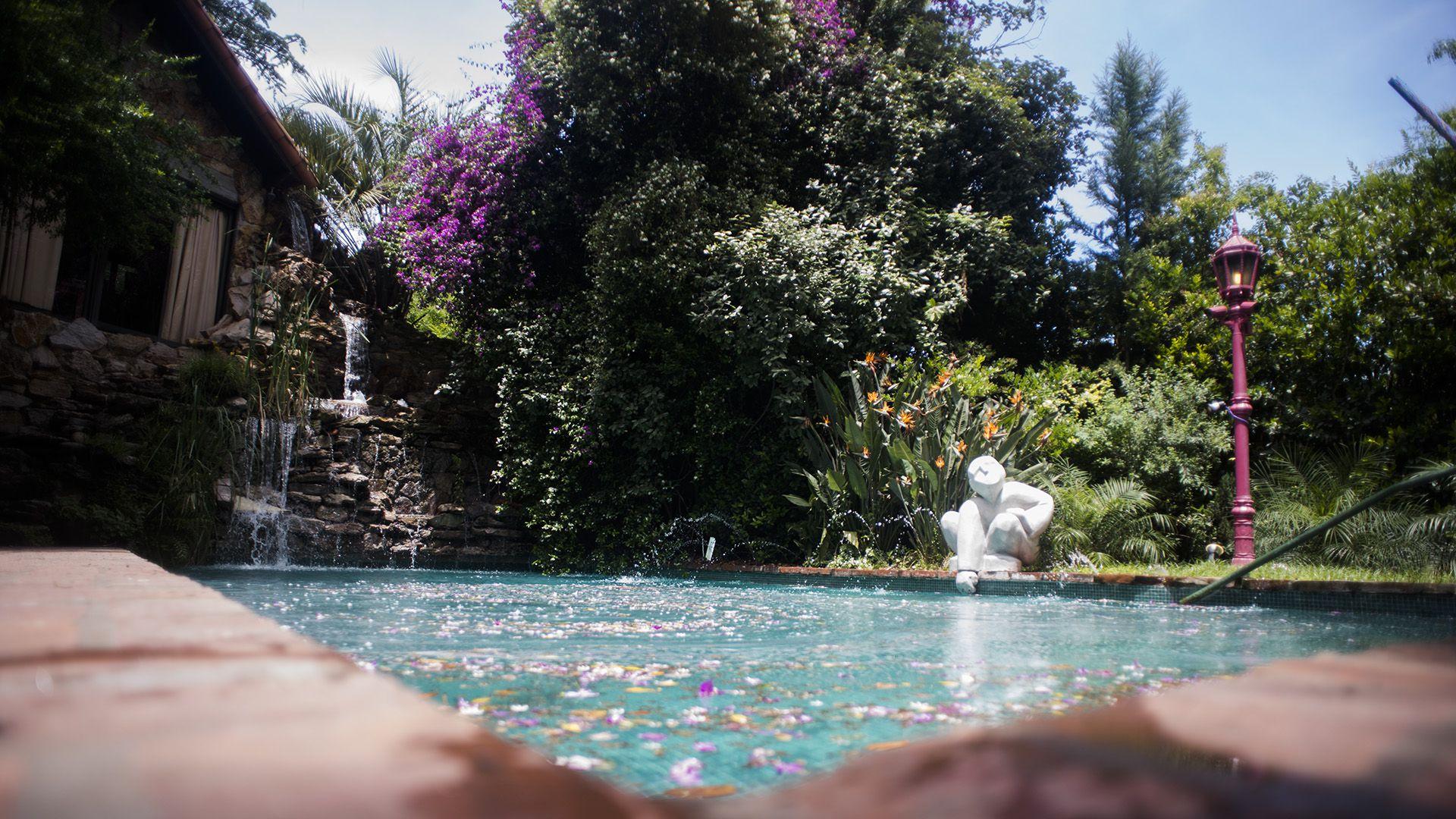 La piscina con cascada en el jardín de la casa del director teatral (Adrián Escandar)