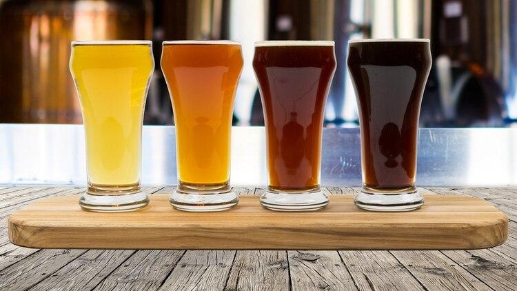 La presencia de levadura en la cerveza, componente que emite dióxido de carbono, explicaría la predilección del mosquito (Shutterstock)