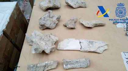 En el contenedor había cerca de 100 piezas pertenecientes al patrimonio cultural de Argentina. Foto: Prensa Dirección General de Aduanas/Télam/CBRI