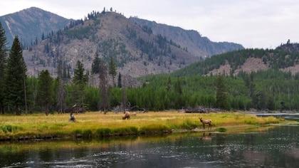 Las montañas del Parque Yellowstone, uno de los sitios más transitados por los buscadores del tesoro