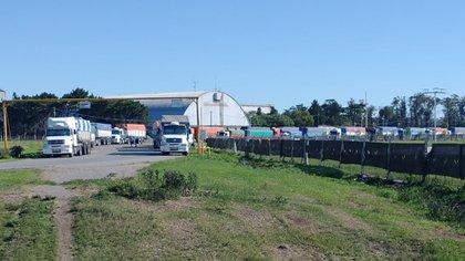 El paro de transportistas afectó la exportación de trigo, según señalaron desde el ámbito privado